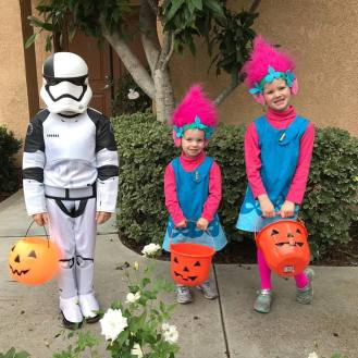 halloween poppies and storm trooper